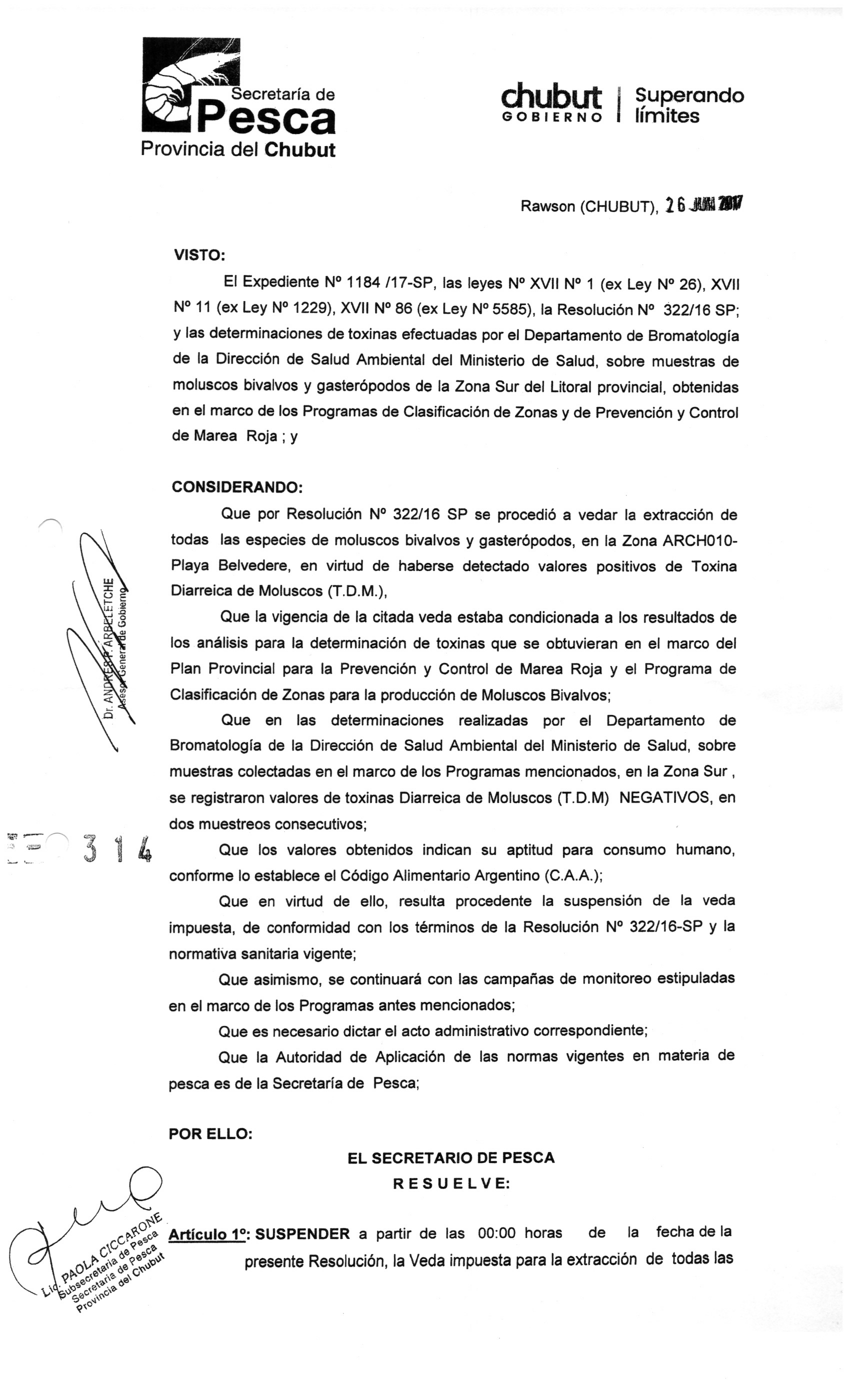 resolucion 314 - 1